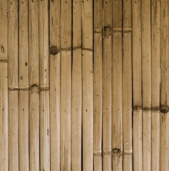 Bambusowy tło