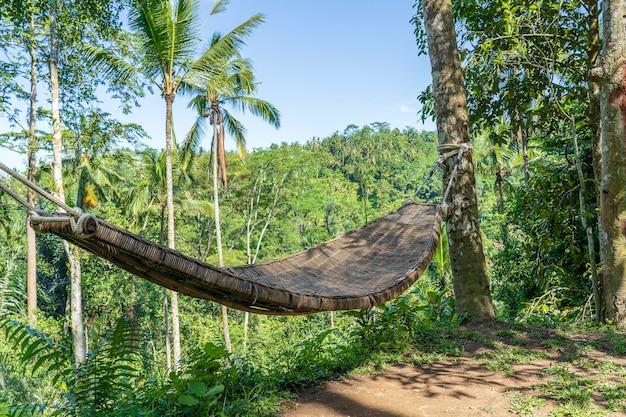 Bambusowy wiklinowy hamak obok tropikalnej dżungli na wyspie bali, indonezja, z bliska