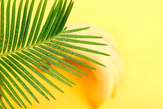 Banan z liściem palmowym