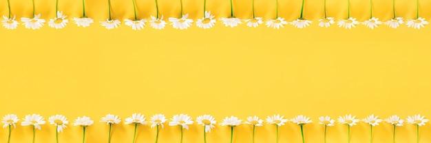 Baner wykonany z białych kwiatów rumianku na żółto