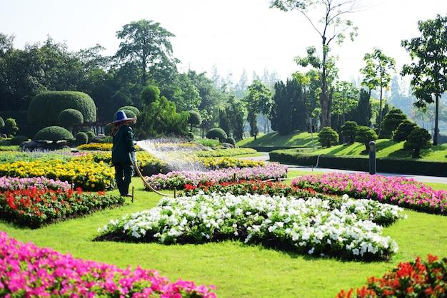 Bangkok tajlandia piękny ogród kwiatowy w dużym parku w bangkoku