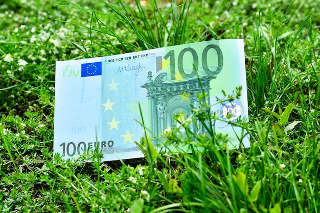 Banknot sto euro leży na zielonym alarmie w miejscu podobnym do zielonego trawnika.
