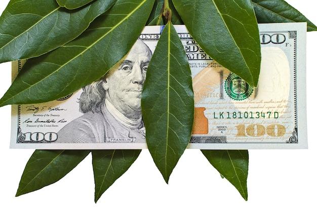 Banknot studolarowy z liśćmi laurowymi