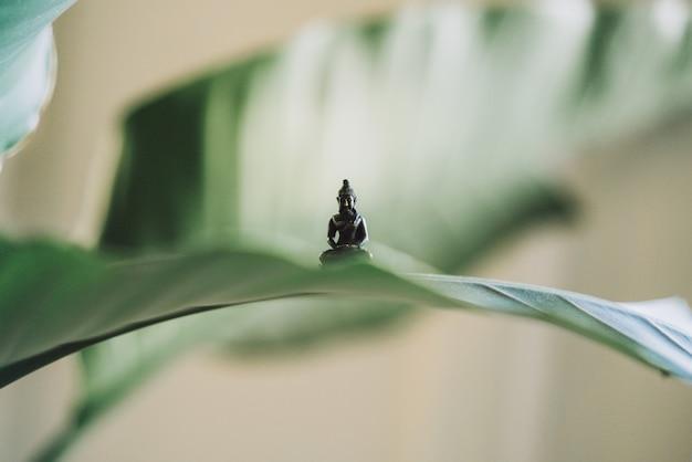 Bardzo mała statua buddy na dużym liściu rośliny
