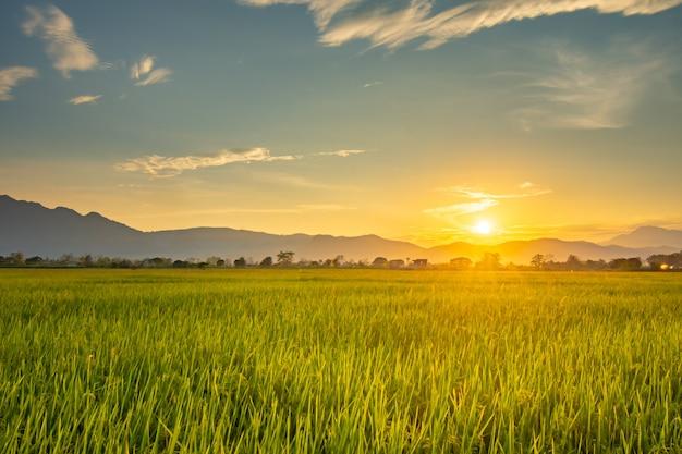 Bardzo piękny zachód słońca w górach doi nang non. widok z przodu to zielone pole. krajobraz prześwitujący przez pomarańczowe chmury.