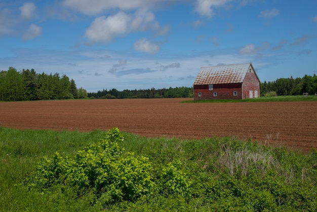 Barn at farm, kensington, wyspa księcia edwarda, kanada
