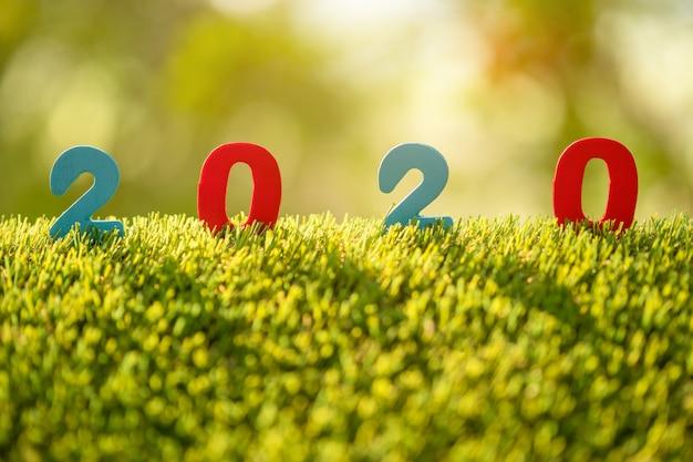 Barwi liczbę 2020 na górze zielonej trawy w ogrodowym plamy tle