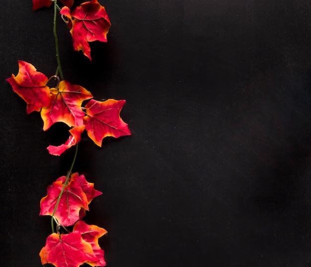 Barwiona gałązka z liśćmi na czarnej desce