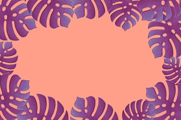 Barwiony monstera rośliny tło. monstera opuszcza na koralowym koloru tle. letnia koncepcja minimalna. miejsce na tekst