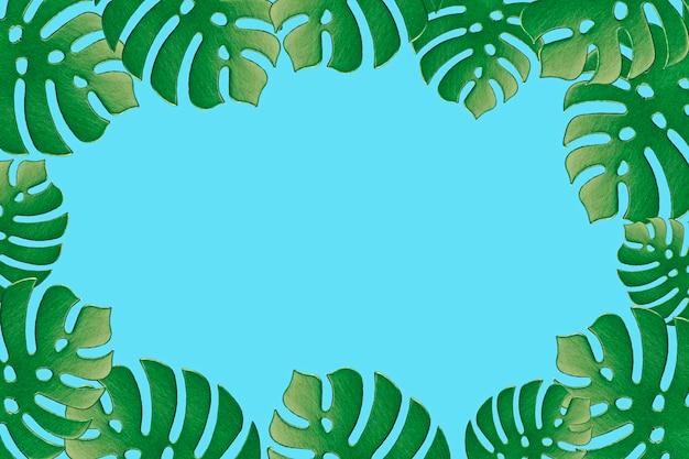 Barwiony monstera rośliny tło. monstera pozostawia na turkusowym tle. letnia koncepcja minimalna. miejsce na tekst