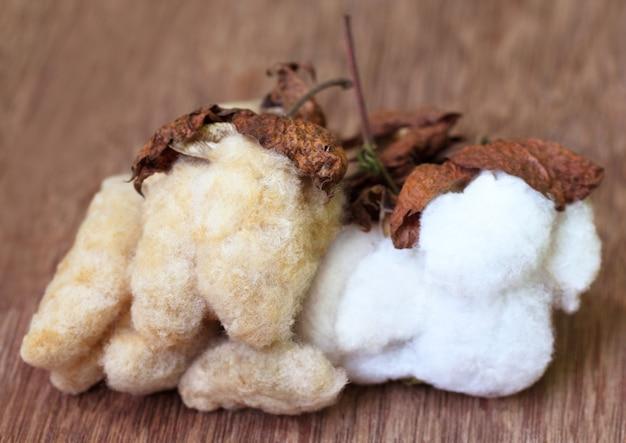 Bawełna organiczna z bliska na drewnianej powierzchni