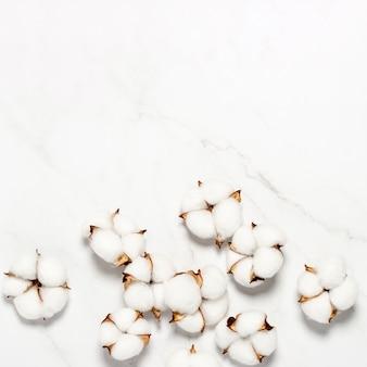 Bawełniane kwiaty na marmurowej powierzchni. koncepcja naturalnego produktu, wystrój, dekoracja domu, wnętrze. plac. leżał płasko, widok z góry