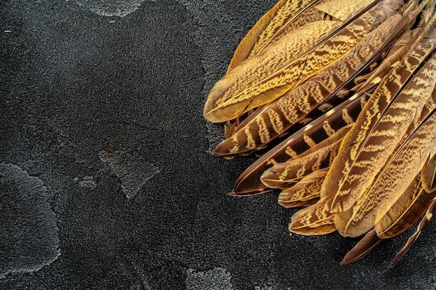 Bażant upierza na ciemnym teksturowanym tle, kopii przestrzeń