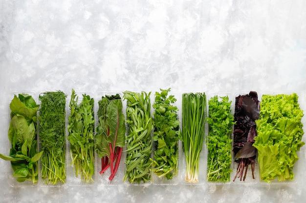 Bazylia ze świeżej zieleni, kolendra, sałata, bazylia fioletowa, kolendra górska, koperek, zielona cebula w plastikowych pudełkach na szarym betonie