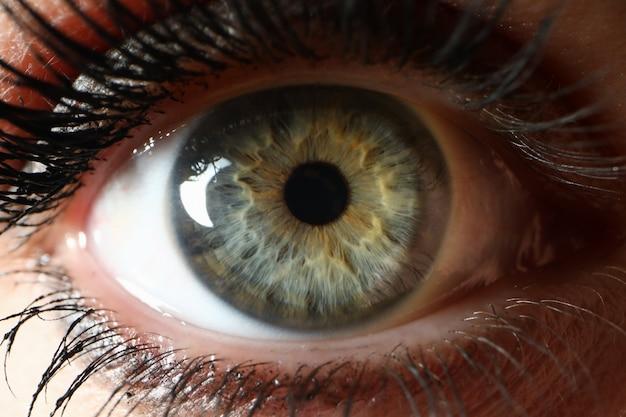Beaty kobiety zakończenia oka zbliżenia super makro-