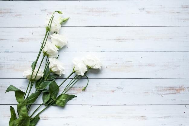 Beauti matki dzień tła kwiatu
