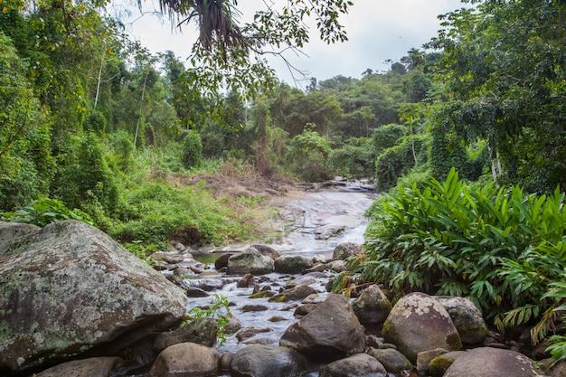 Beautiful white stone's waterfall grauna, paraty - grauna rio de janeiro