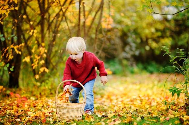 Berbeć ma zabawę w jesień parku. mały chłopiec bawi się z liści jesienią
