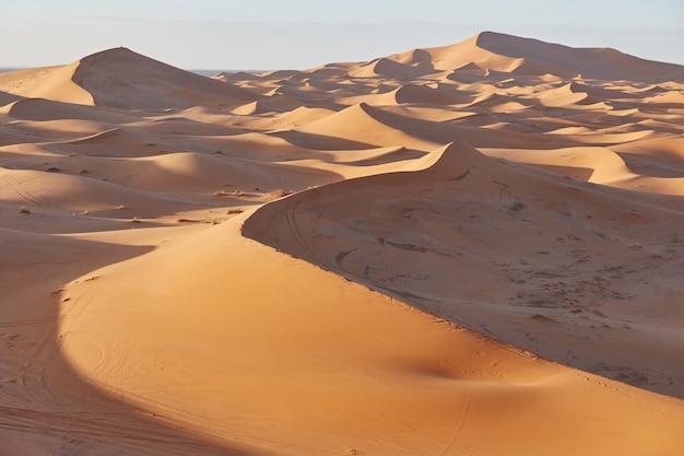 Bezkresne piaski sahary. piękny zachód słońca nad wydmami pustyni sahara, maroko, afryka