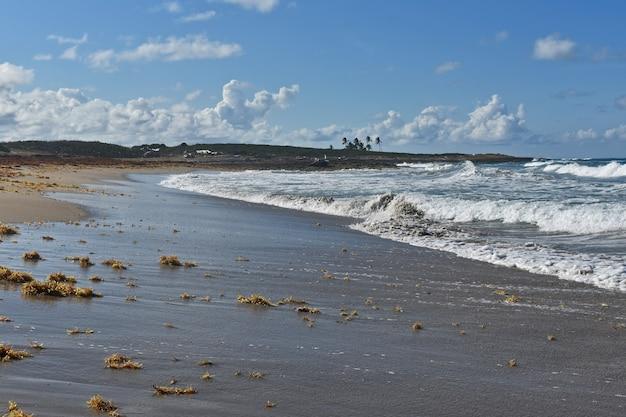 Bezludna piaszczysta plaża. republika dominikany