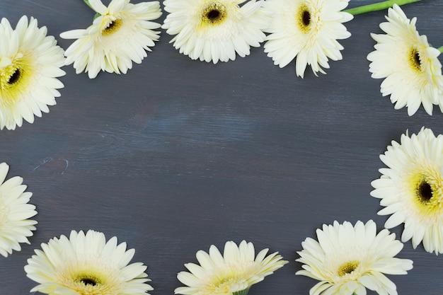 Beżowa ramka z kwiatami gerbery na ciemnym drewnianym stole z bliska