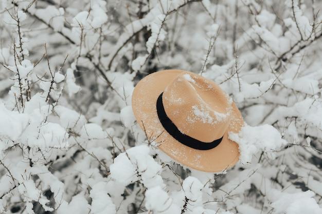 Beżowy kapelusz w zimowym lesie na śnieżnych gałęziach.