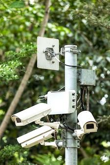 Bezpieczeństwo cctv trzy kamery w parku na drzewie