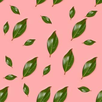 Bezproblemowa tropikalna dżungla wzór liści, magnolia
