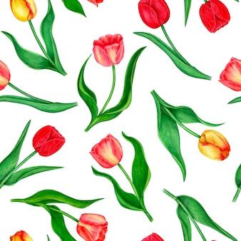 Bezszwowe kwiatowy tupot z tulipanów