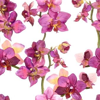 Bezszwowy kwiecisty deseniowy tło z purpurowymi orchideami