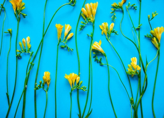 Bezszwowy kwiecisty wzór na błękitnym tle