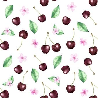 Bezszwowy wzór akwarela z wiśnią na białym
