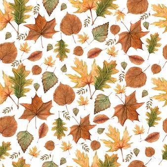 Bezszwowy wzór jesień spadku liście