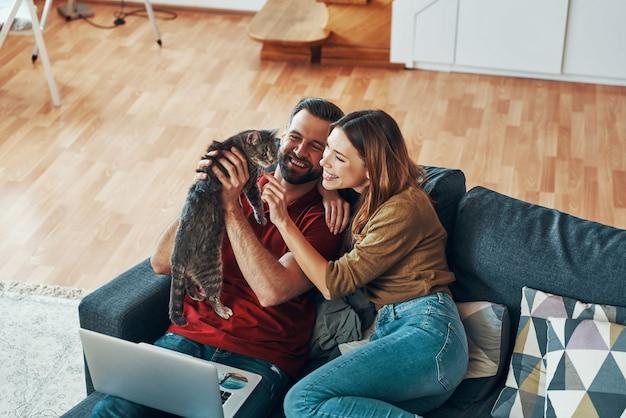 Beztroska młoda para w swobodnej odzieży, która łączy się z kotem domowym i uśmiecha się, odpoczywając na kanapie w pomieszczeniu