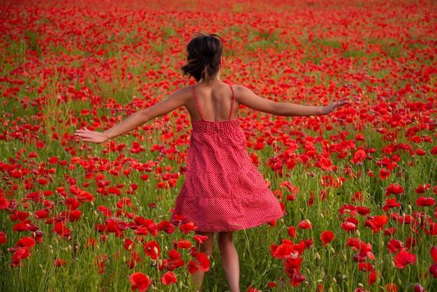 Beztroska wiosna, pole makowe. kobieta w zbiorach kwiatów. dzień pamięci i anzac.