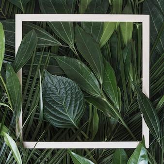 Biała ramka graniczna na zielonych liściach gałązka