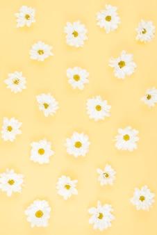 Białego kwiatu wzór na beżowym tle