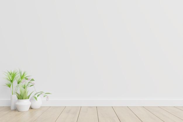 Biała aranżacja wnętrz z roślinami na podłodze.