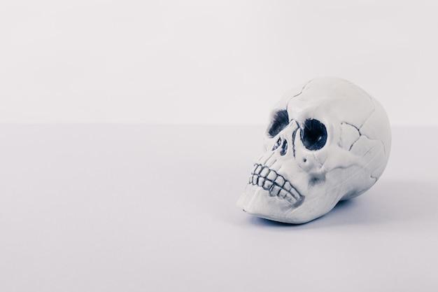 Biała czaszka halloween
