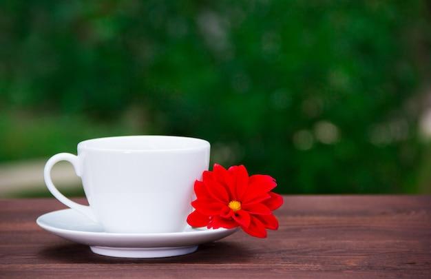 Biała filiżanka, spodeczek i czerwony kwiat na zielonym tle