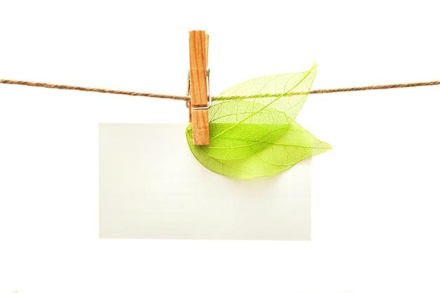 Biała karta z zielonymi liśćmi i klamerkami na białym tle