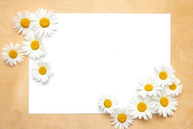 Biała kartka papieru z rumiankiem