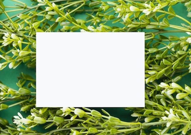 Biała księga na tle kwiatów