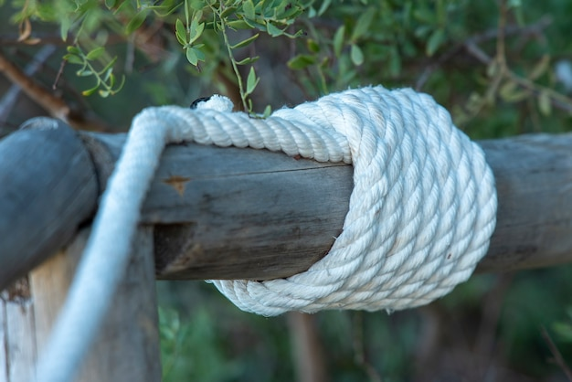 Biała lina związana na drewnianej kłodzie
