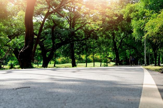 Biała linia na drodze w parku publicznym