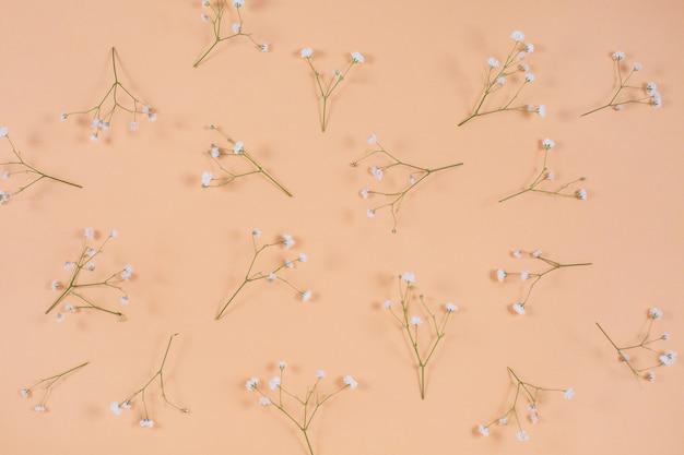 Biała łyszczec na beżowym pastelowym wzorze na biurko