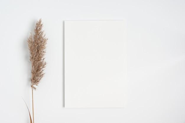 Biała makieta z zaproszeniem leżała płasko z suchą gałęzią trawy pampasowej