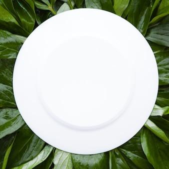 Biała okrągła rama ozdobiona zielonymi liśćmi, puste miejsce na tekst makiety