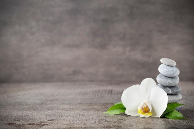 Biała orchidea i kamienie spa na szarym tle.