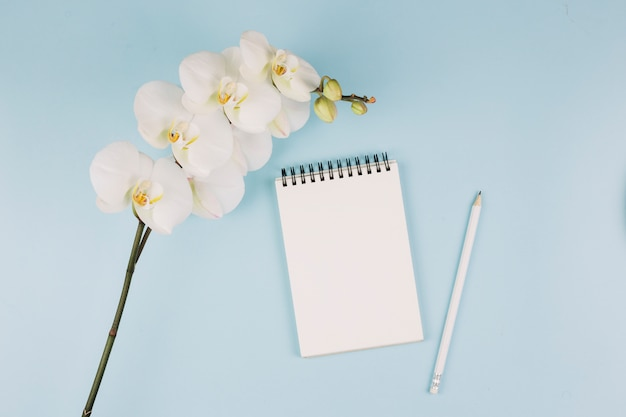 Biała orchidea oddziału kwiat; spiralny notatnik i ołówek na niebieskim tle